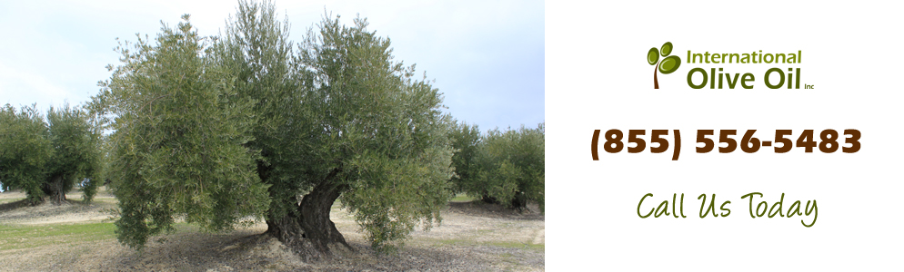 http://internationaloliveoil.com/wp-content/uploads/2013/01/olive7.jpg