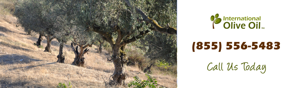 http://internationaloliveoil.com/wp-content/uploads/2013/01/olive4.jpg